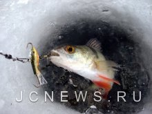 Два дня на льду: рыбаки сумели выжить
