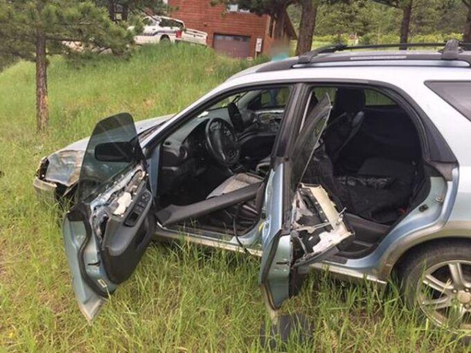 Американский медведь угнал автомобиль и попал в аварию
